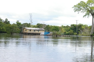 blogO Rio Ariaú025