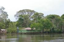 blogO Rio Ariaú112